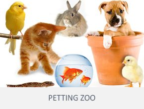 frenzy-events-other-services-petting-zoo