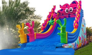 inflatables and rides