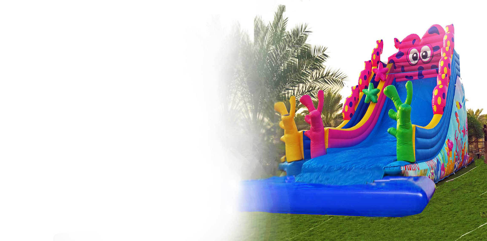 frenzy bouncies inflatables slides